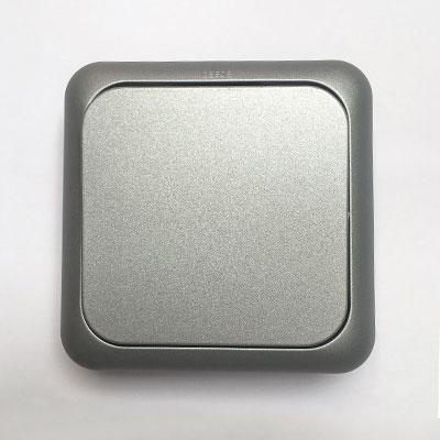 serie-1000-plata